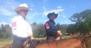 Fler hästar gör dig till en bra ryttare.