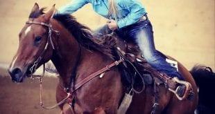 hästmänniskan