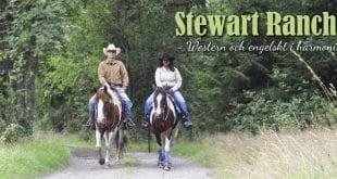luckyrider_stewart1_westernridning