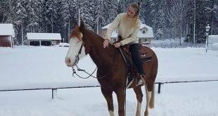 Elinoras Blogg – Från dressyr till western
