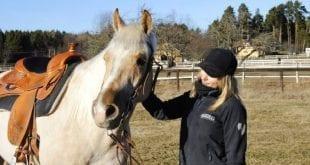 Hästföräldrar och förebilder