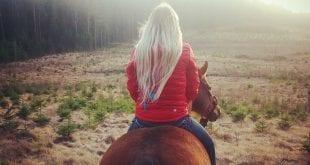 Dyrast häst vinner